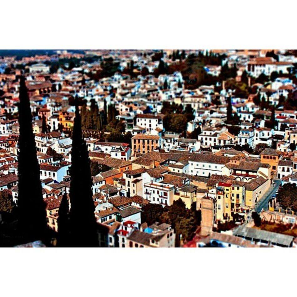 Tiltshift Tilt Shift Effet Miniature Tiltandshift Miniatureeffect Effect Effecto Espagne Andalousie Grenade Palace Palais Château Vue Ville Maison SPAIN Andalousia Granada Alhambra Alhambrapalace Castle View city