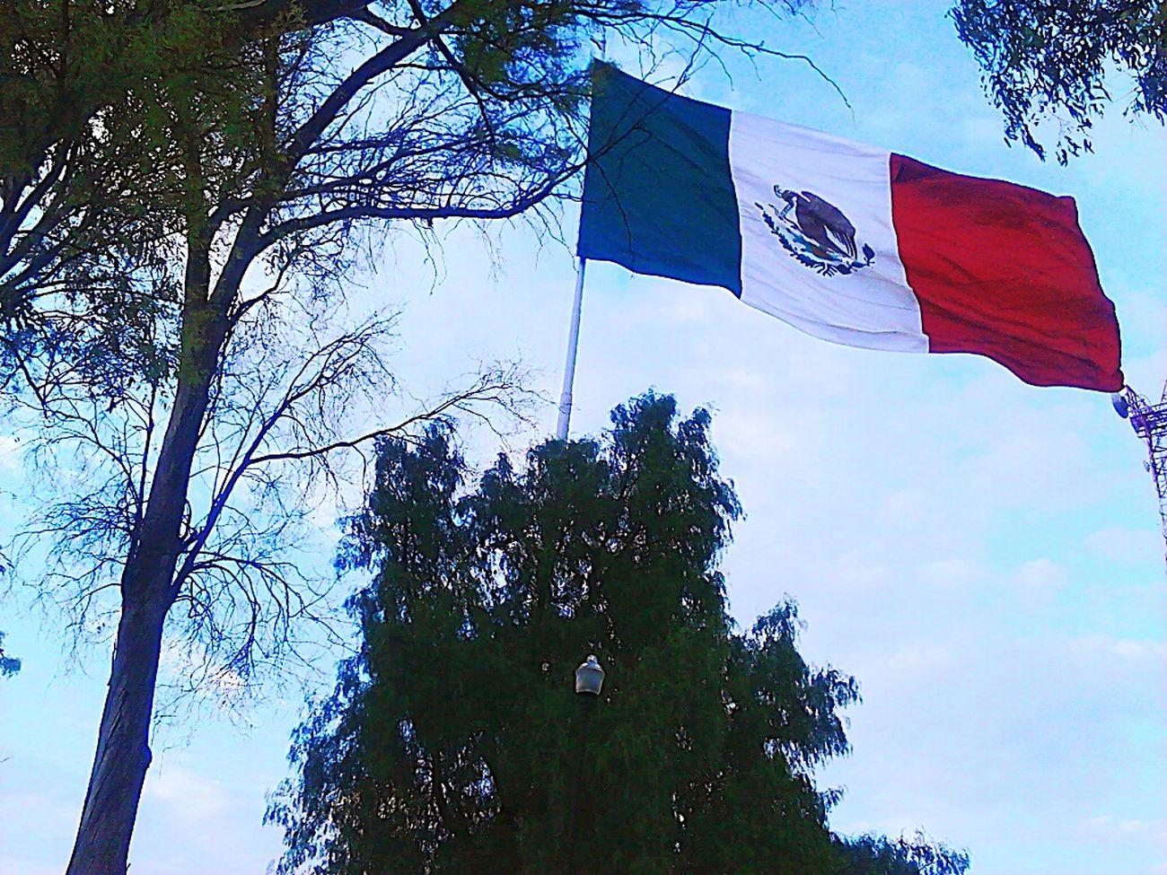 Mexico SímboloPatrio Aguila