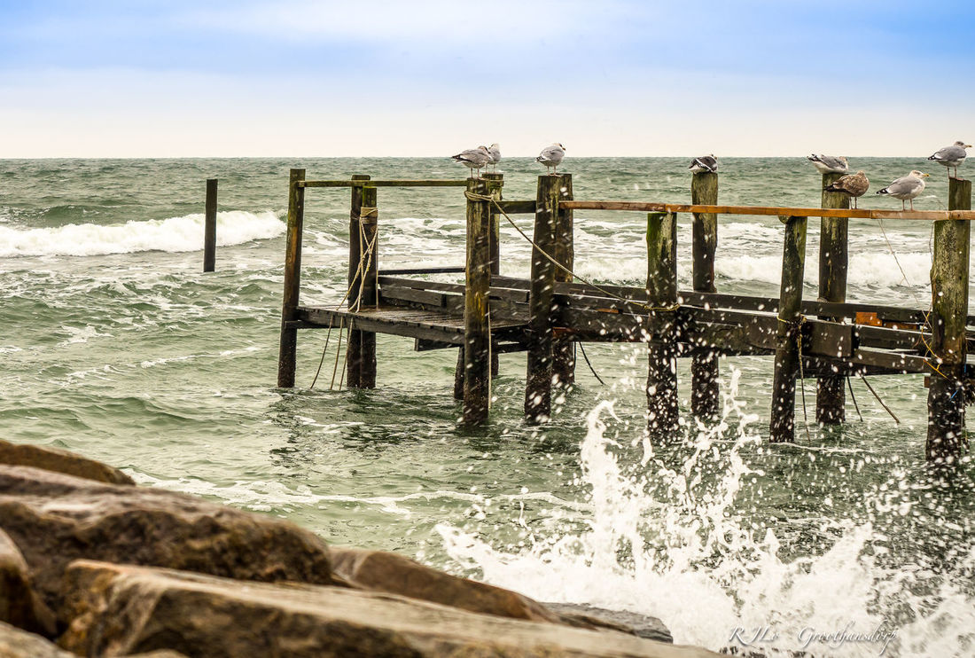 Baltic Sea Beach Coastline EyeEm Gallery EyeEm Nature Lover Germany Horizon Over Water Nature Nature No People Olympus Ostsee Outdoors Rügen Scenics Sea Sky Water Wood - Material Traveling Home For The Holidays