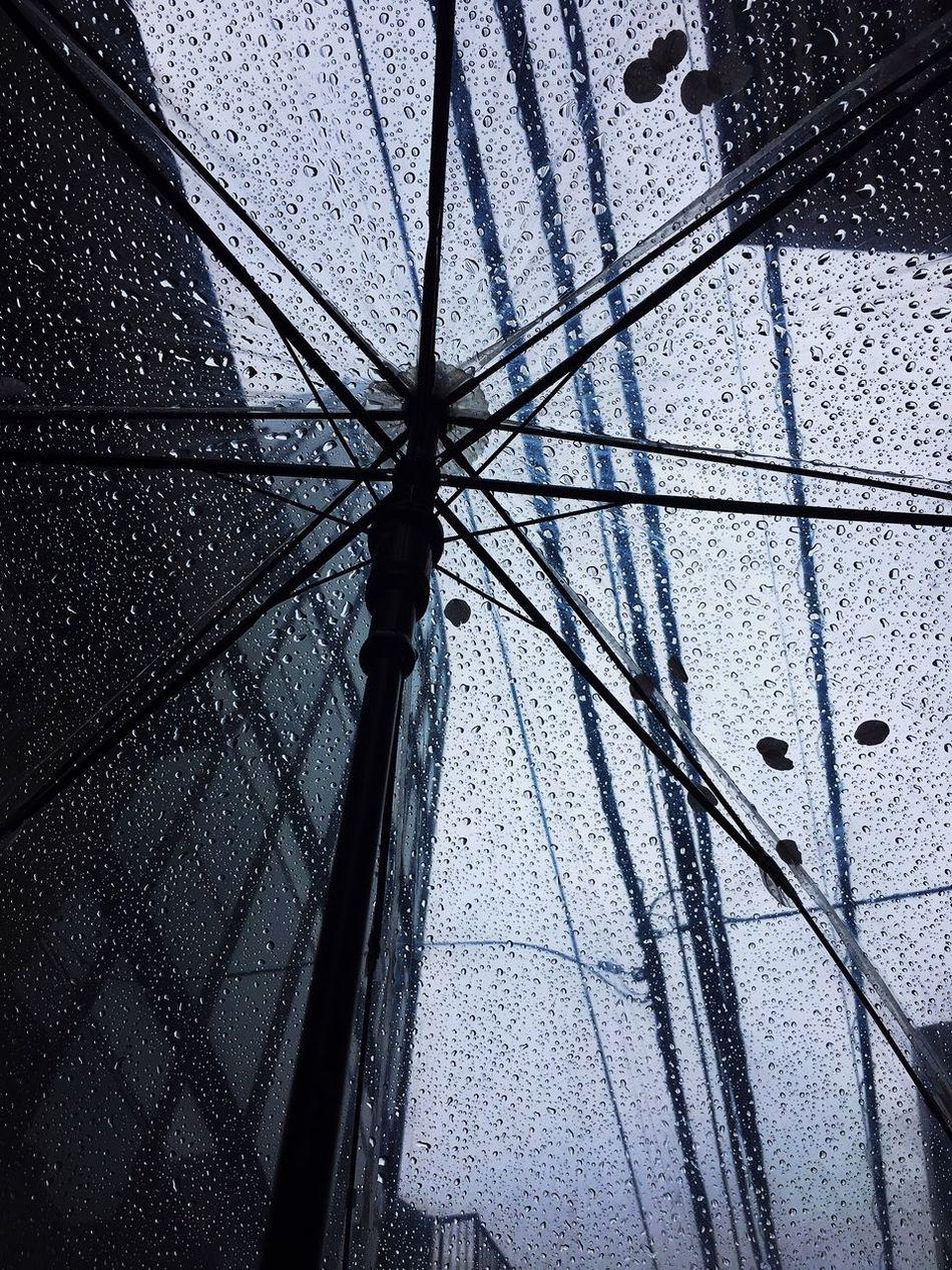 Rainy Day Low Angle View Umbrella Cherryblossom Rainy Days Rain Cityscape