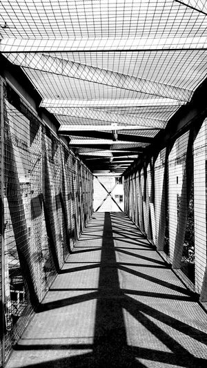 Day Architecture Shadow The Way Forward No People Outdoors Built Structure Bianco E Nero Blancoynegro Blackandwhite Streetphotography Lines Bridge Pont Noir Et Blanc Jour Teintes Blank Street Tranquil Scene Sunlight Exterior Construction TCPM Break The Mold
