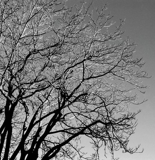 Blackandwhite Black And White Blackandwhitephotography Black & White Blackandwhite Photography Black&white Black And White Photography Black And White Collection  Black And White Portrait Blac&white  Blackwhite +black -white + Black - White