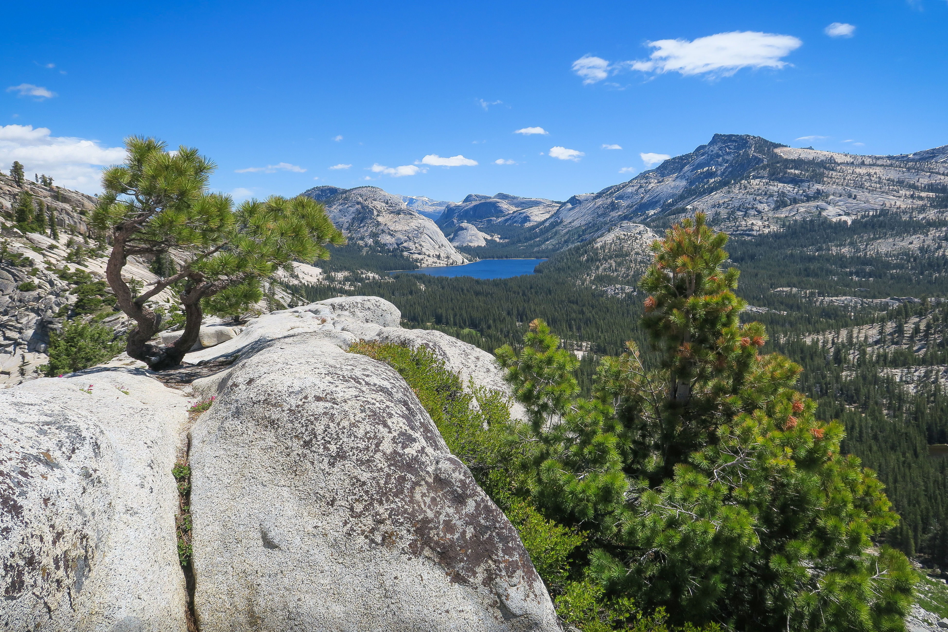 mountain, nature, tranquil scene, scenics, beauty in nature, tranquility, sky, landscape, tree, outdoors, mountain range, day, no people, scenery, range