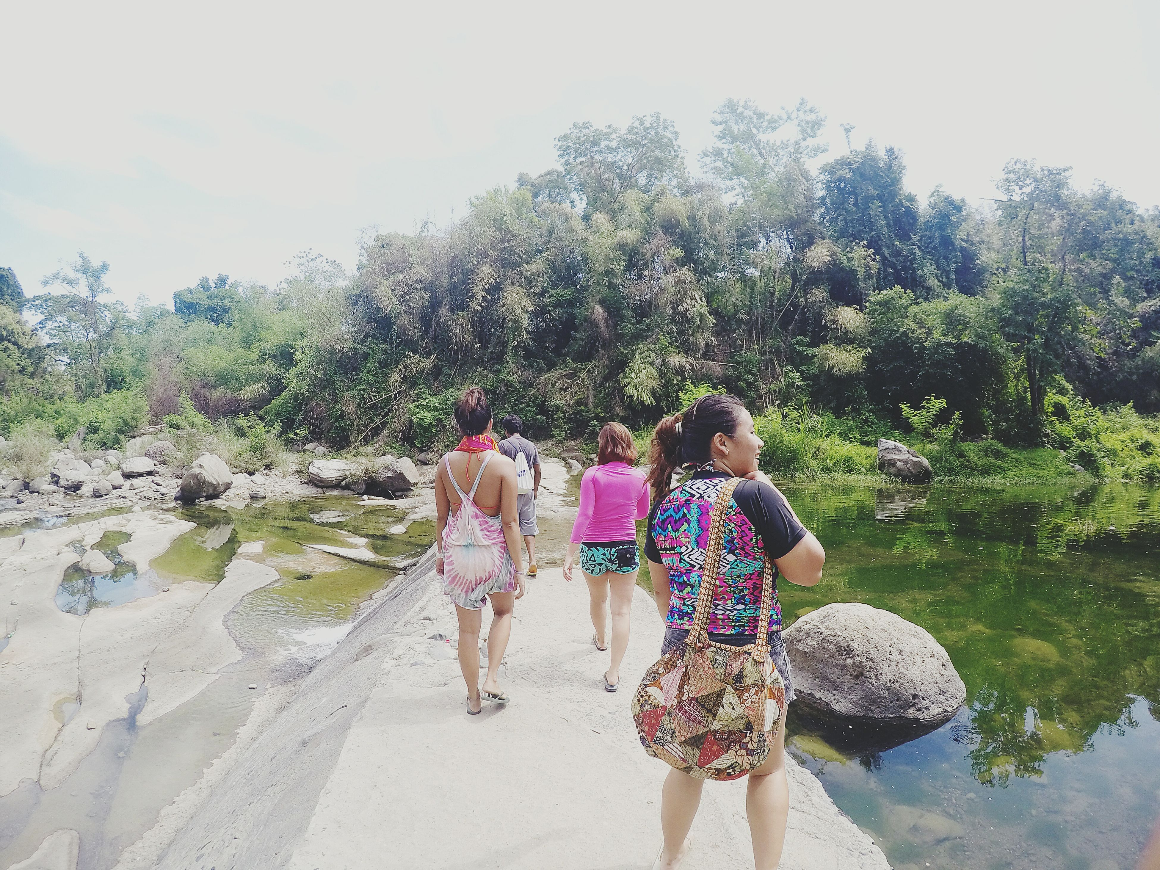 lifestyles, leisure activity, rear view, full length, person, tree, men, togetherness, walking, casual clothing, bonding, vacations, standing, sunlight, nature, beach, clear sky, friendship