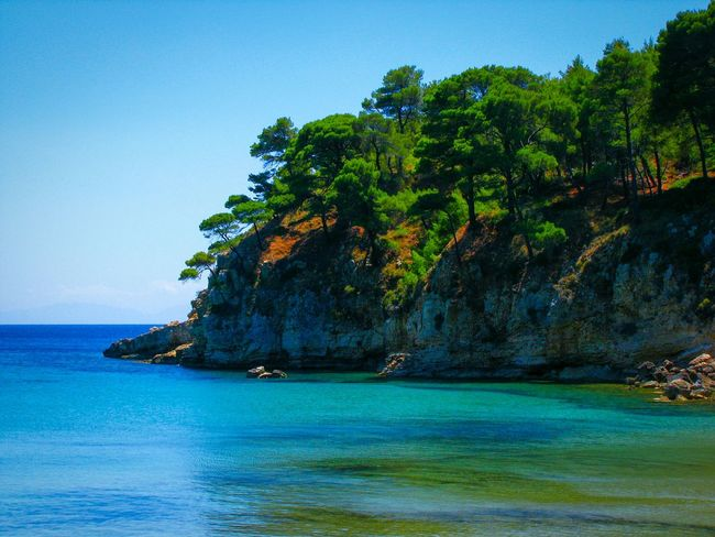 Colors And Patterns One Pic/2 Edits Beach Beach Photography Life Is A Beach Sea Water Tranquil Scene Scenics Blue Tranquility Beauty In Nature Tree Waterfront Nature Idyllic Cliff Majestic Rock Formation Trees And Sea Trees Pine Trees Crystal Clear Waters Blue And Green Shades Of Blue