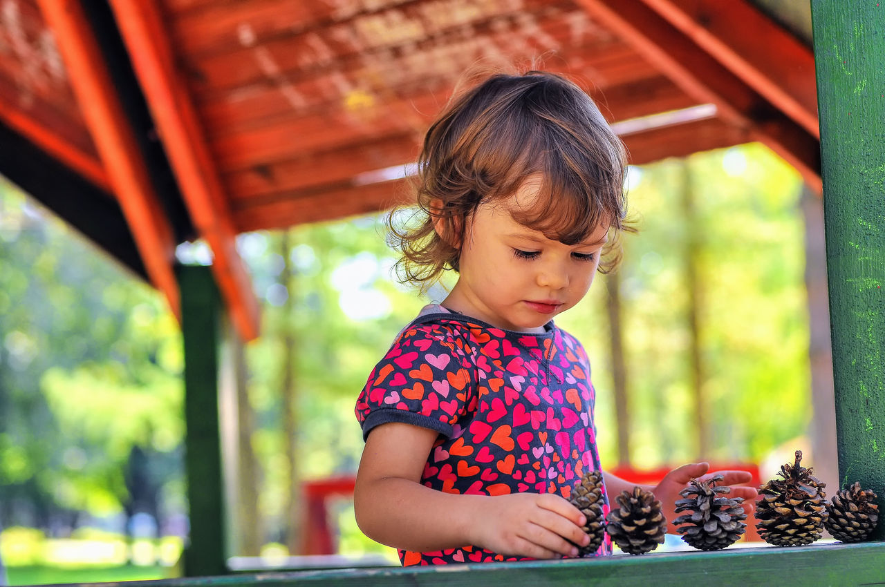 A little girl is setting up a row of the pinecones at the porch. Alignment Carefree Carefree Child Photography Remember This Summer Carefreeness Carefreeness Of Childhood Childhood Childhood Memories Don't Give Up Freshness Kids Play Natural Toys Never Give Up One By One Persistence  Pine Cones Pinecones Playing In The Nature Playing With Nature Playing With Pine Cones Playing With Pinecones Porch Safety Thoroughness Under The Roof