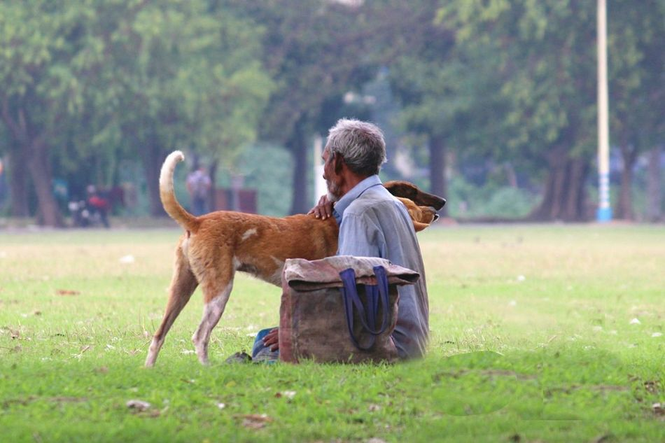 Beautiful stock photos of senior,  40-44 Years,  Adult,  Animal,  Animal Themes