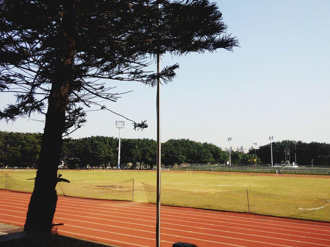 運動的好天氣~~Sports Field Running Sunny Day