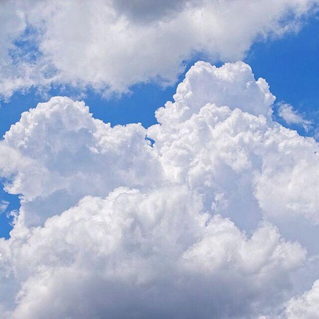☁️ ☀️ もくもくくも Instagood ダレカニミセタイソラ Webstagram Sky 空 青空 Bluesky Clouds 雲 青 Blue Cloud Love Instacool Japan Likes Instalike Nikon D3300 Nikond3300 写真好きな人と繋がりたい Sigma 一眼 一眼レフ