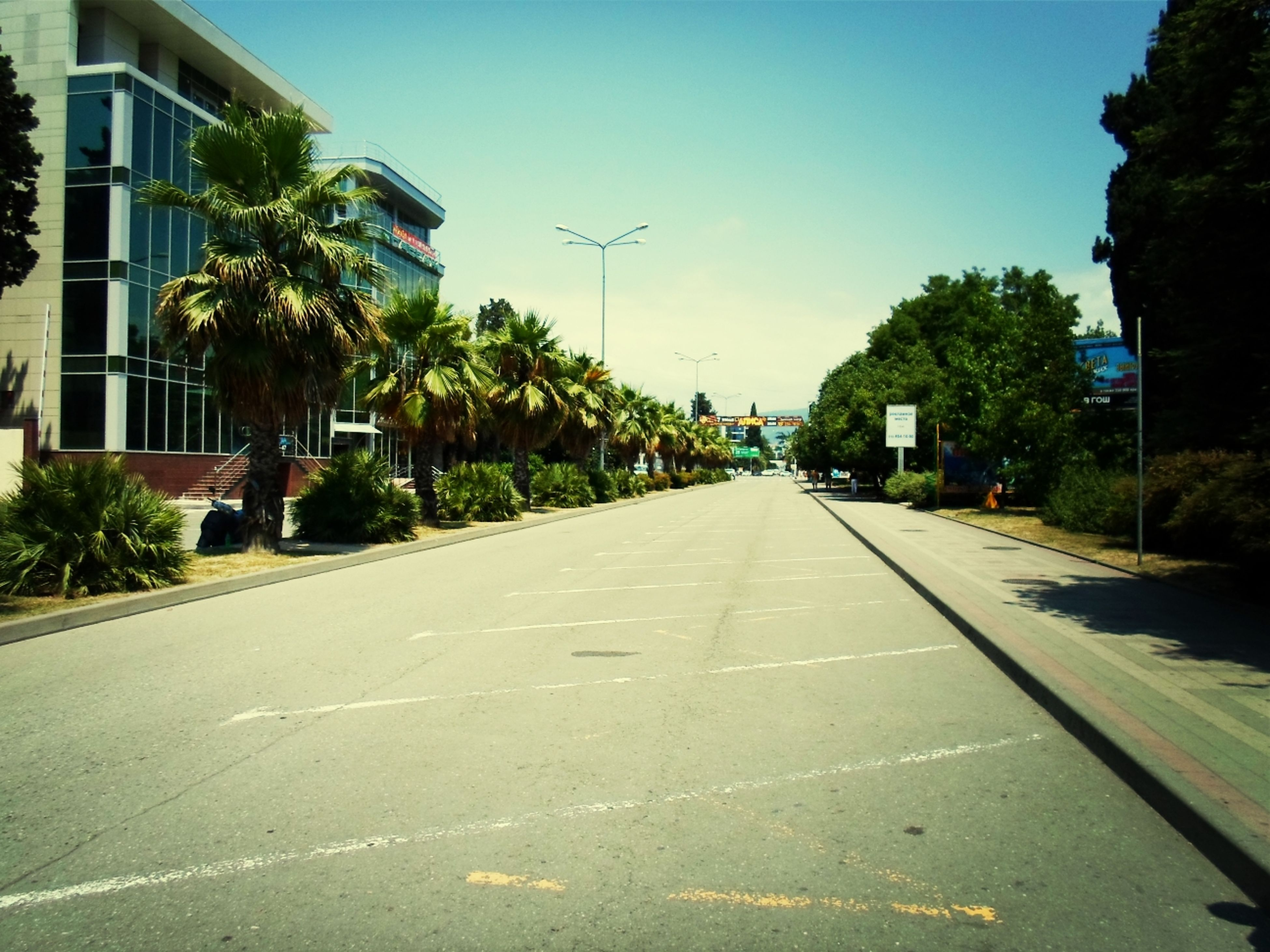 the way forward, transportation, road, tree, road marking, diminishing perspective, street, vanishing point, sky, asphalt, building exterior, clear sky, car, empty, built structure, empty road, architecture, street light, mode of transport, outdoors