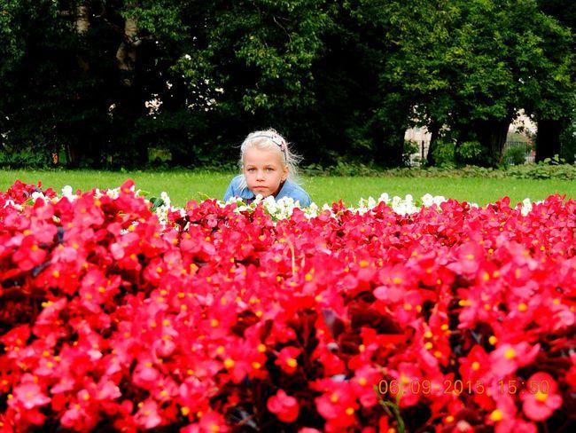 Flowerfairy Angelina Daughter Peterburg