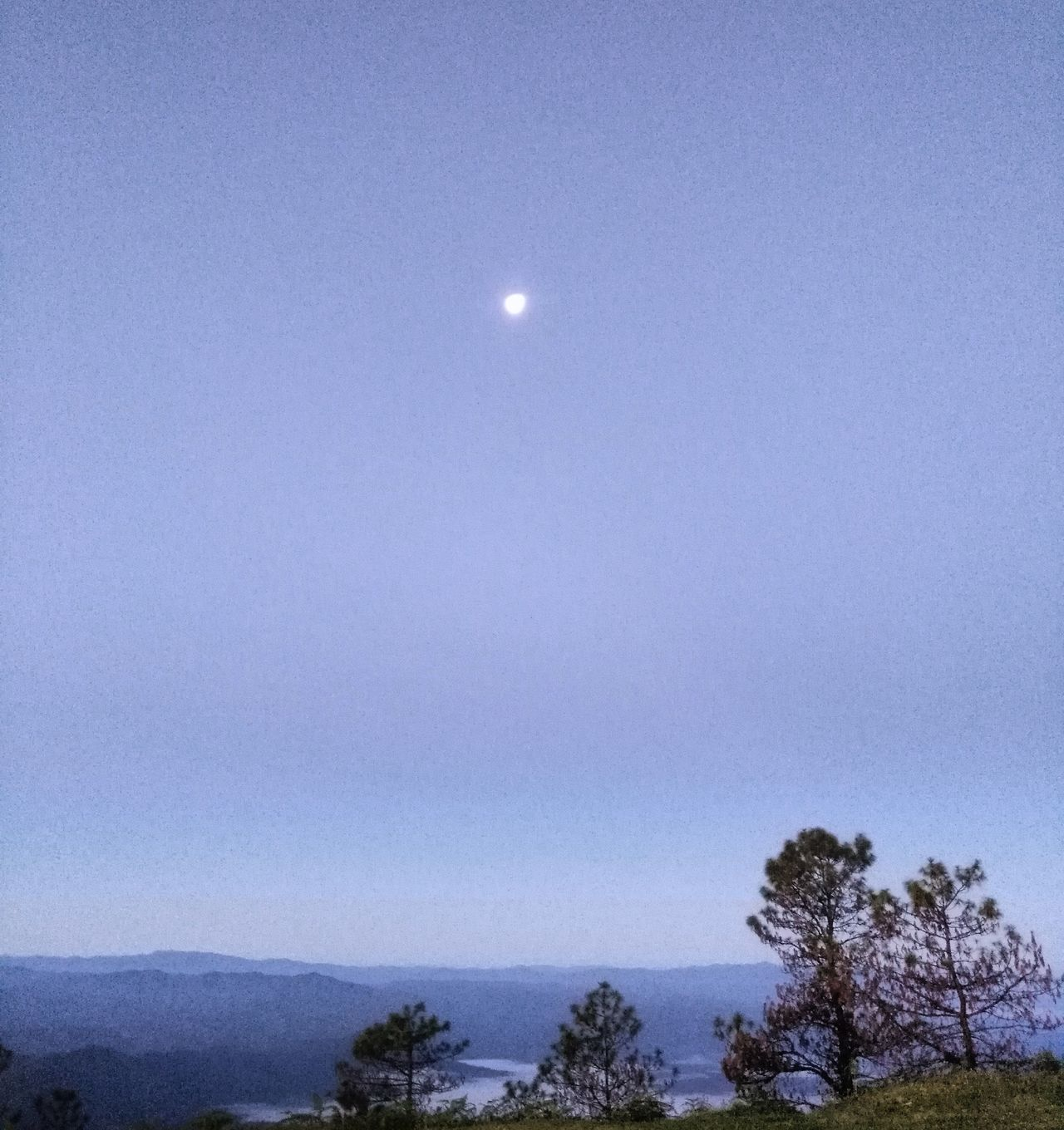 Moon light Moon Sky Nature No People Tree Beauty In Nature Outdoors Morning View Morninglight My Hometown Samoeng Chiang Mai | Thailand Fulfilling Mountain Nature Back To Nature Beauty In Nature Sightseeing Thailand