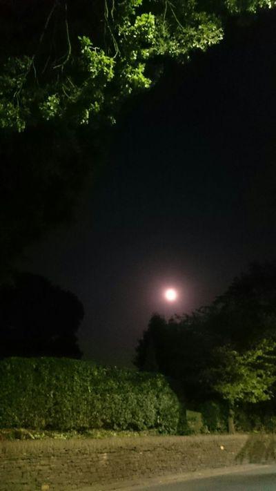 Beautiful Moon  Walking Home Clear Skies