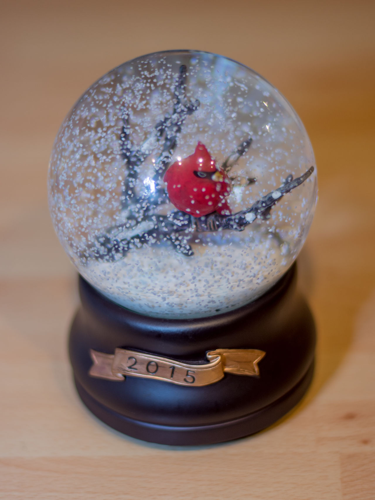 2015  Cardinal Birds Close-up Danger Indoors  Indulgence No People Snow Snow Globe Social Issues