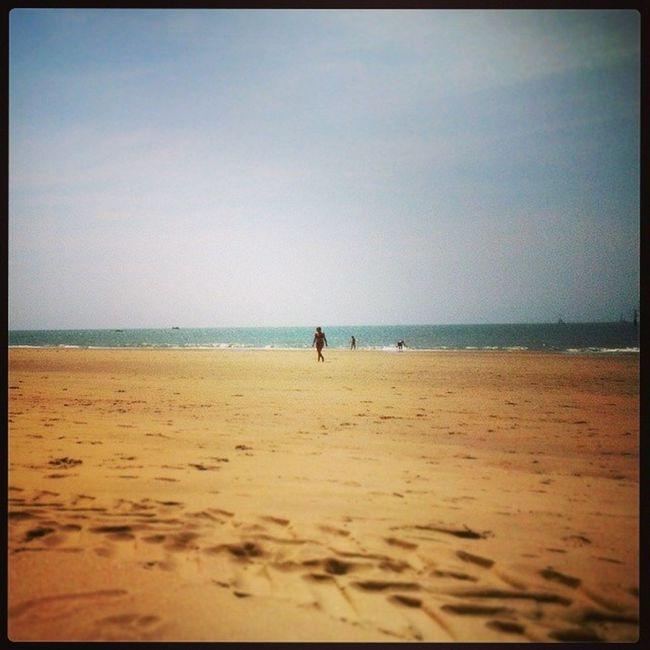 Plage Lapalmyre GrandeCote Ocean beach picsoftheday