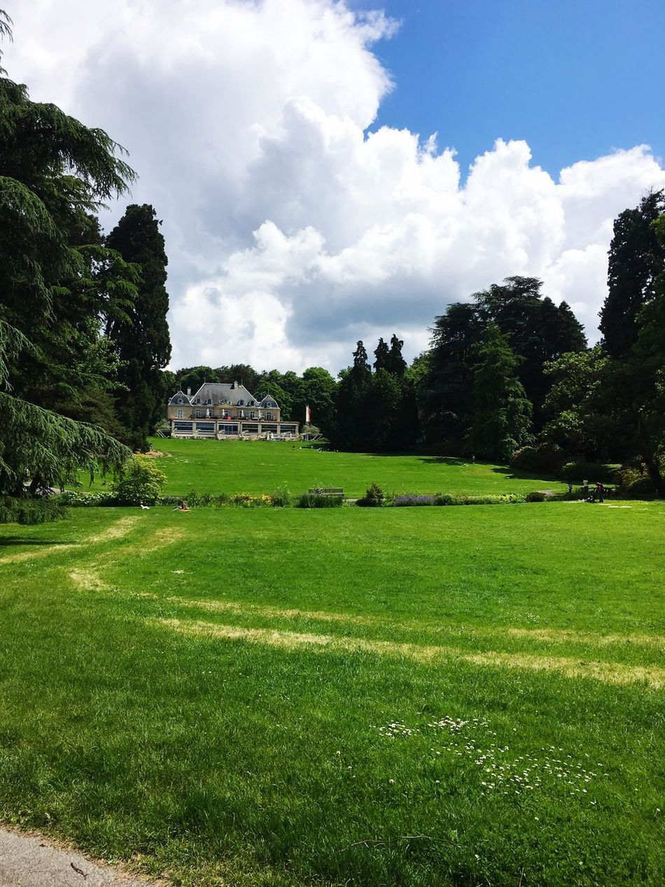 Sunday Brunch @Parc de la Grange Hello World Sunday Afternoon Brunchtime Theplacetobe  Friends ❤ Family Matters Check This Out Comeandsee Beautifull Place Green Green Green!  Greenparkhotel Itsummer 🤓👒👠👑