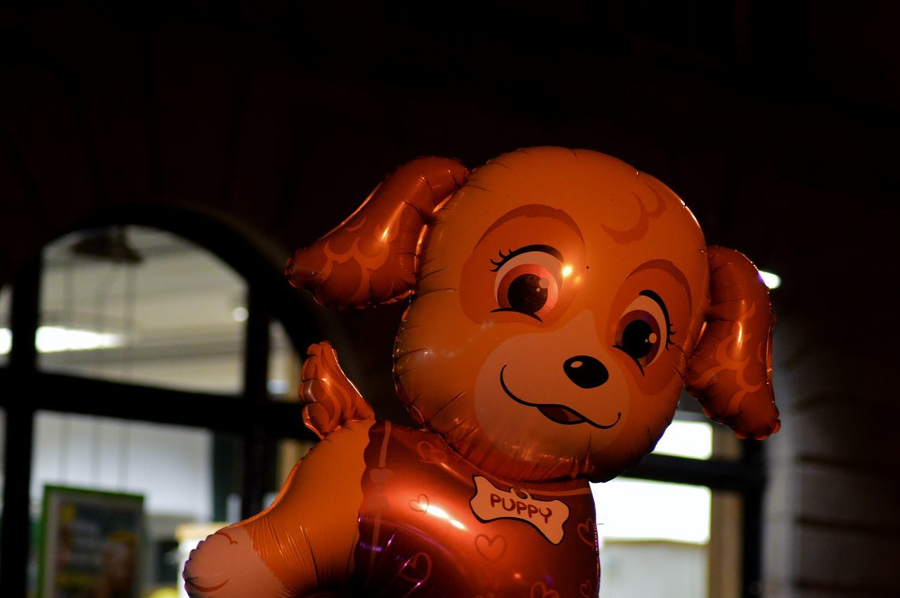 Balloon Check This Out Dog Floating Fun Happy Hello World Night Nikon Nikon D3200 No People Orange Color Puppy Simple Photography Smile