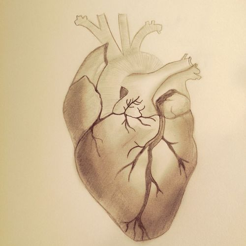 Art Heart Drawing