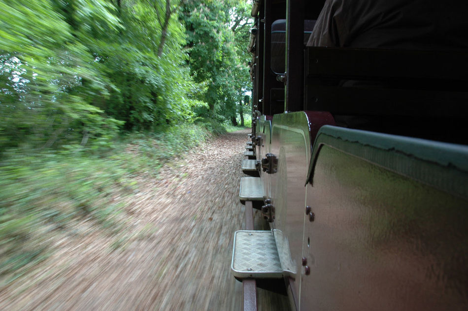 Beautiful stock photos of train, Blurred Motion, Day, Journey, Lush Foliage