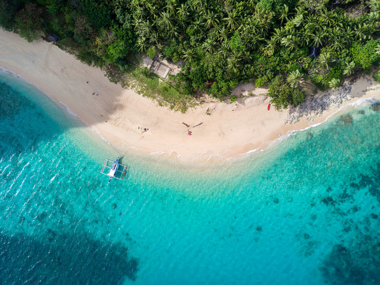 Beach Beauty In Nature Coral Day Drone  Dronephotography Eyeem Philippines Nature No People Outdoors Palawan Philippines Swimming Pool Tree Water