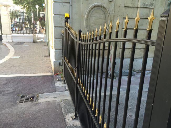 Gate Goldenlilies