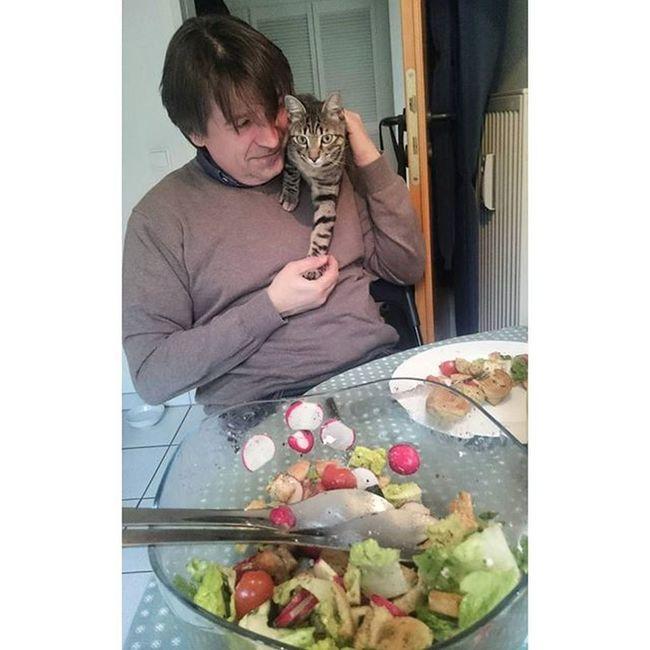 Mittagessen mit frechem Kater, der auf Daddy klettern muss 😸 Rayado_the_cat Hellofresh Hasoliebe