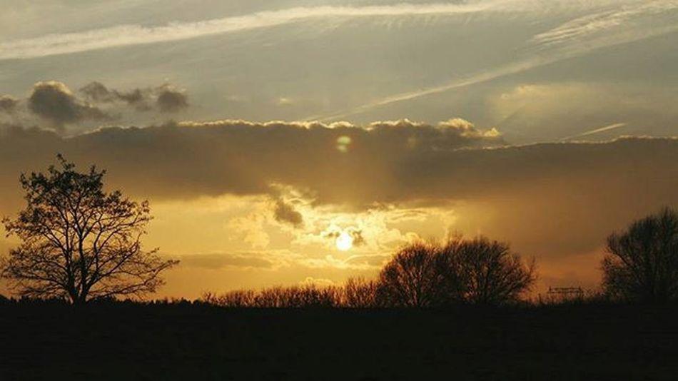 Sonnenuntergang Photo Zielitz Bäume Wunderschön Lovly Beautiful Nofilter Photograph Stolz Natural Nature Natur Sky Wolken Sun Sonne