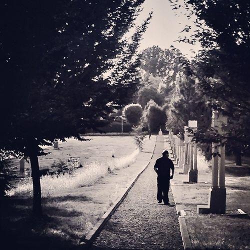 #alone #walk #shade #summer #lifeisbeautiful #italy #igersreggioemilia #convento #frati #scandiano #B&W #iphonography
