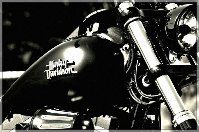 Harley Davidson Live To Ride Boys And Their Toys Taking Photos Boys Toys HarleyDavidsonMotorcycles