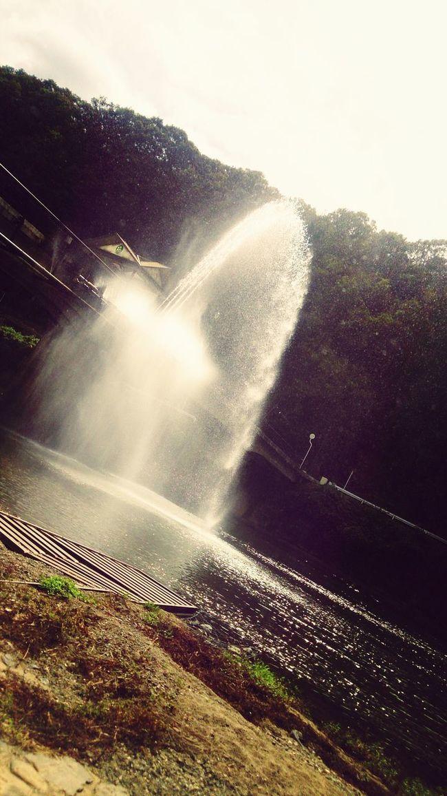 河川公園♪ Bridge River Park