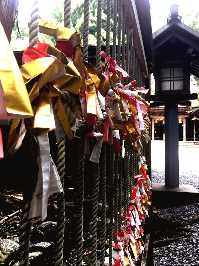 "The ""OMIKUJI"" is Japanese fortune-telling at shrine.Piking up a OMIKUJI written your future and advice,then tying it to a brunch. Fortune Telling Shrine Omikuji Japan Japanese Culture Hope Future 秋葉神社 お参り おみくじ"