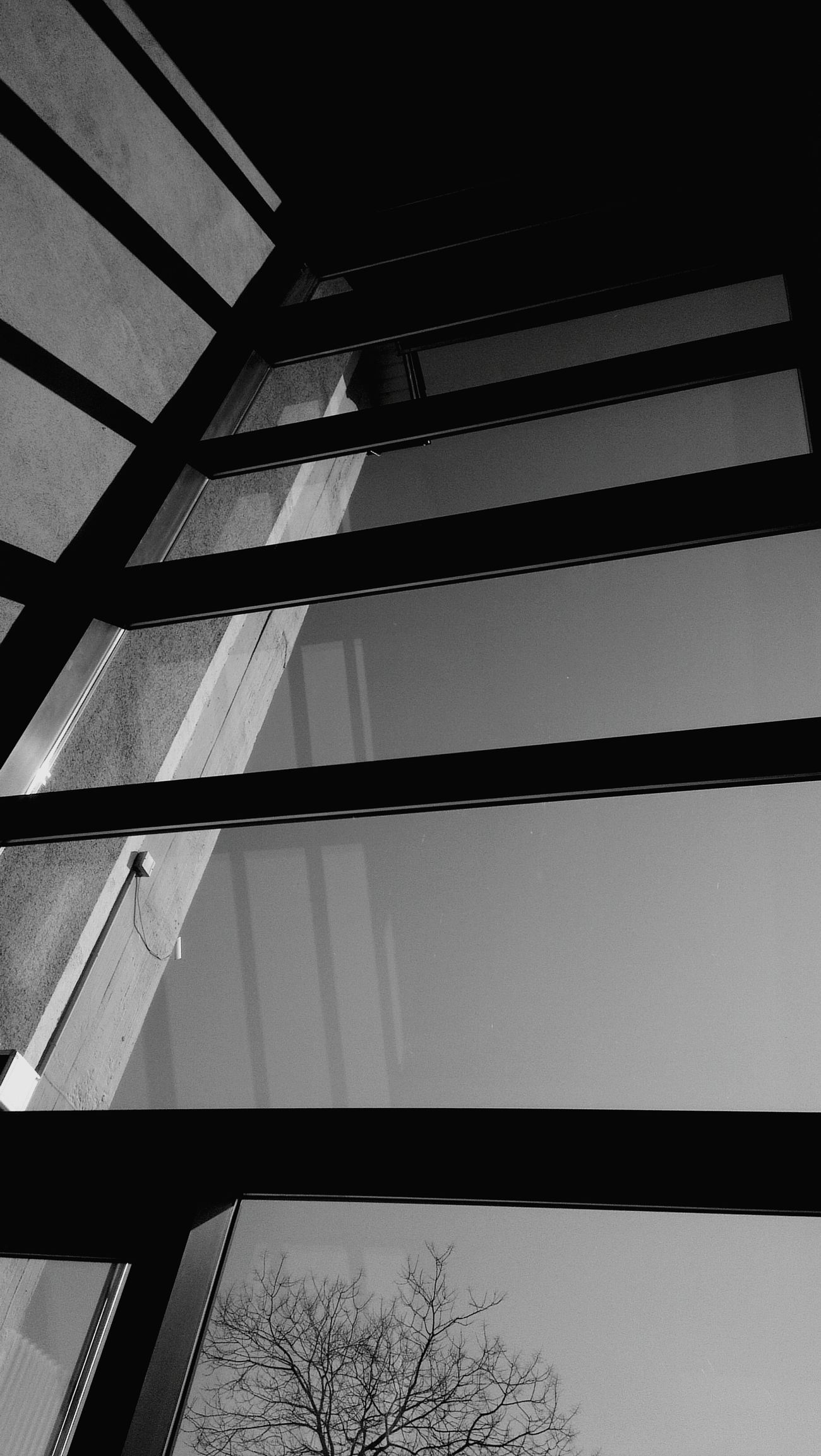 Window Reflections EyeEm Best Shots Simplicity Smart Simplicity EyeEm Best Shots - Black + White Simple Photography Simple.