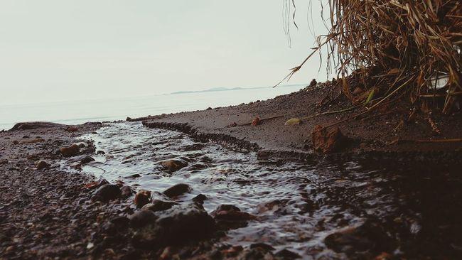Un petit cours d'eau surgissant d'un creek Taking Photos Relaxing Ride Grand Noumea Nouvelle Calédonie