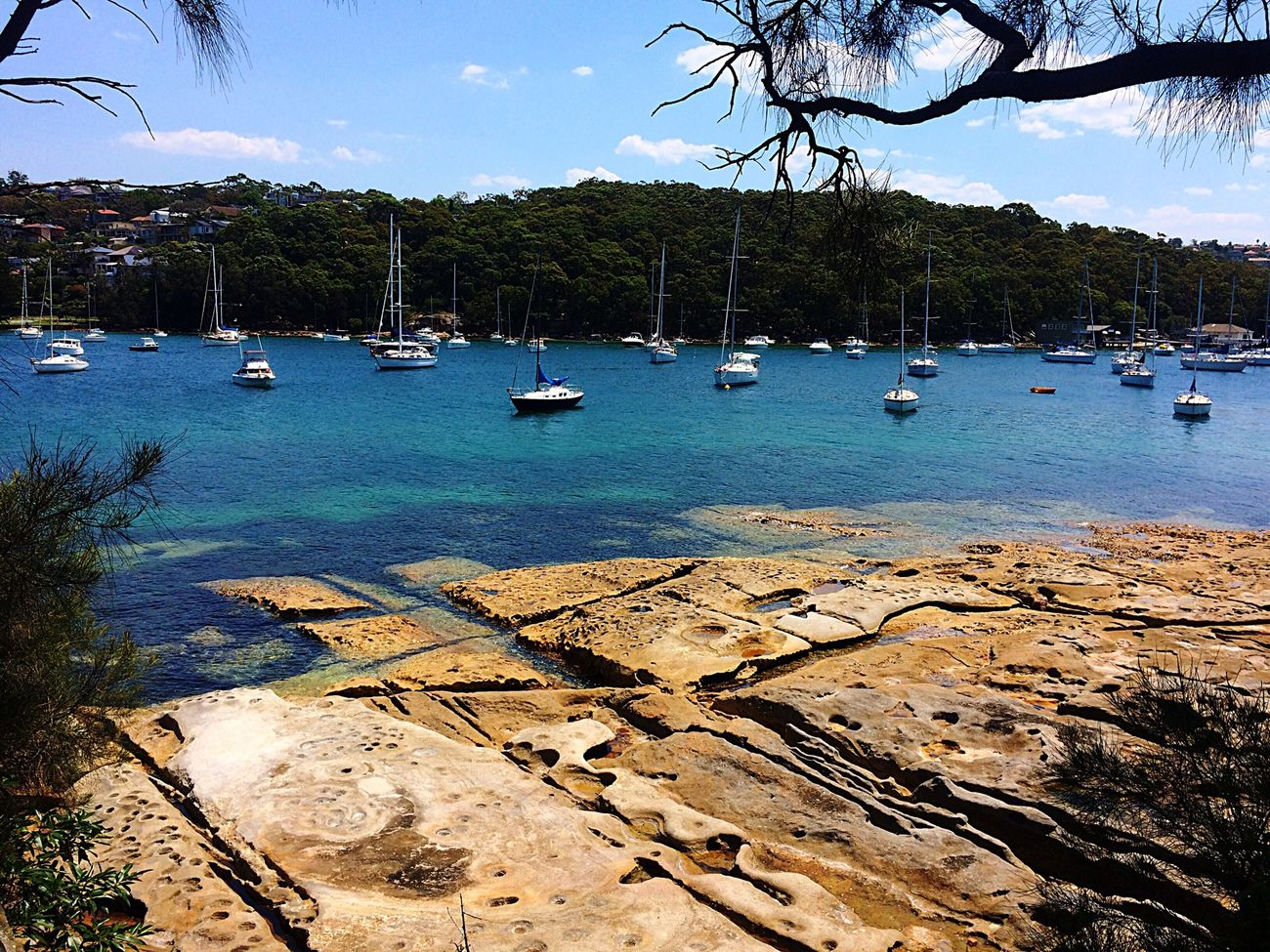 Enjoying The Sun Sailboat Paradise Manly