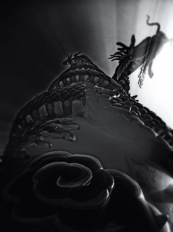 blackandwhite at Thailand looking up ,Dragon flying in the sky. by Bluesky