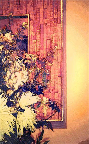 Flowers,Plants & Garden Flowers, Nature And Beauty Flower Photography Flowerlovers Illustration Illustrations  Botanical