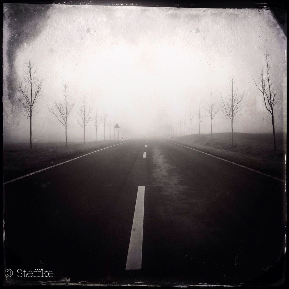 foggy morning at Krummensee Landscape EyeEm Best Shots - Black + White Streetphoto_bw Im Nebel ruhet noch die Welt, noch träumen Wald & Wiesen. Bald siehst du, wenn der Schleier fällt, den blauen Himmel unverstellt, Herbstkräftig die Gedämpfte Welt im warmen Golden fließen. E.Mörike // Einen Dank auch an @an_wa11 für das tolle Gedicht !