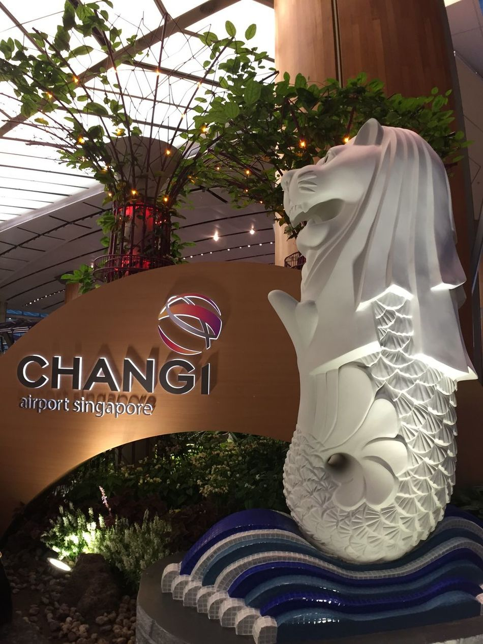 Singapore Changi Airport IPhoneography Iphone6 Iphonegraphy Smartphonephotography Smartimaging Iphonephotography Mobilephotography Mobile Photography Inmacus Iphonegrapher