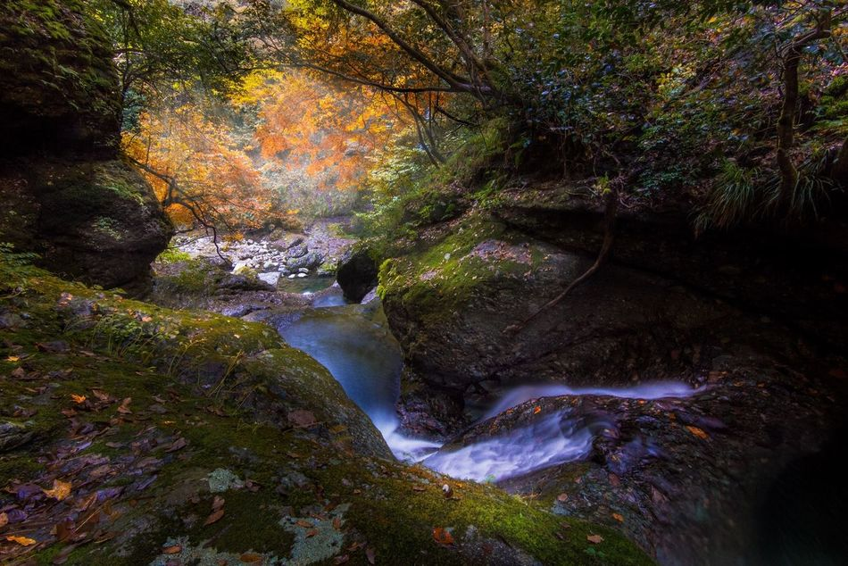 Nature EyeEm Nature Lover Nature_collection EyeEm Best Shots EyeEmBestPics HDR Autumn Water_collection Waterfall
