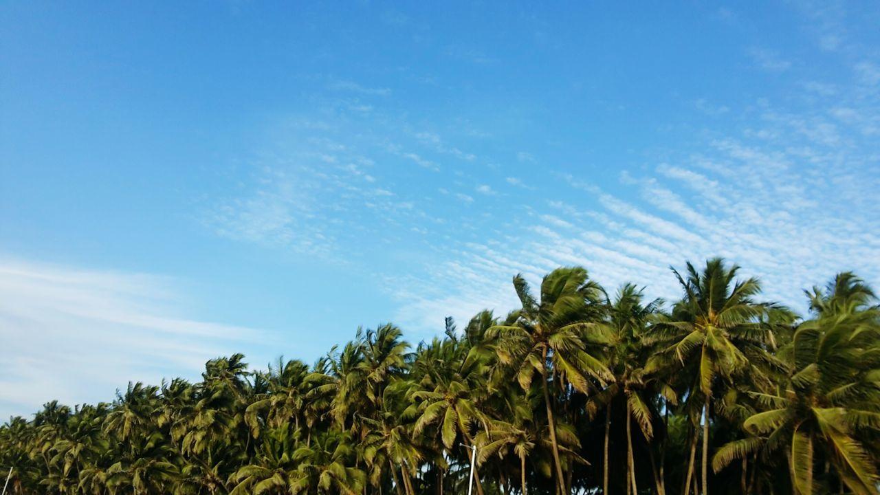 Sky On Serene Cerulean Blue Crystal Clear Day Beach Photograpy