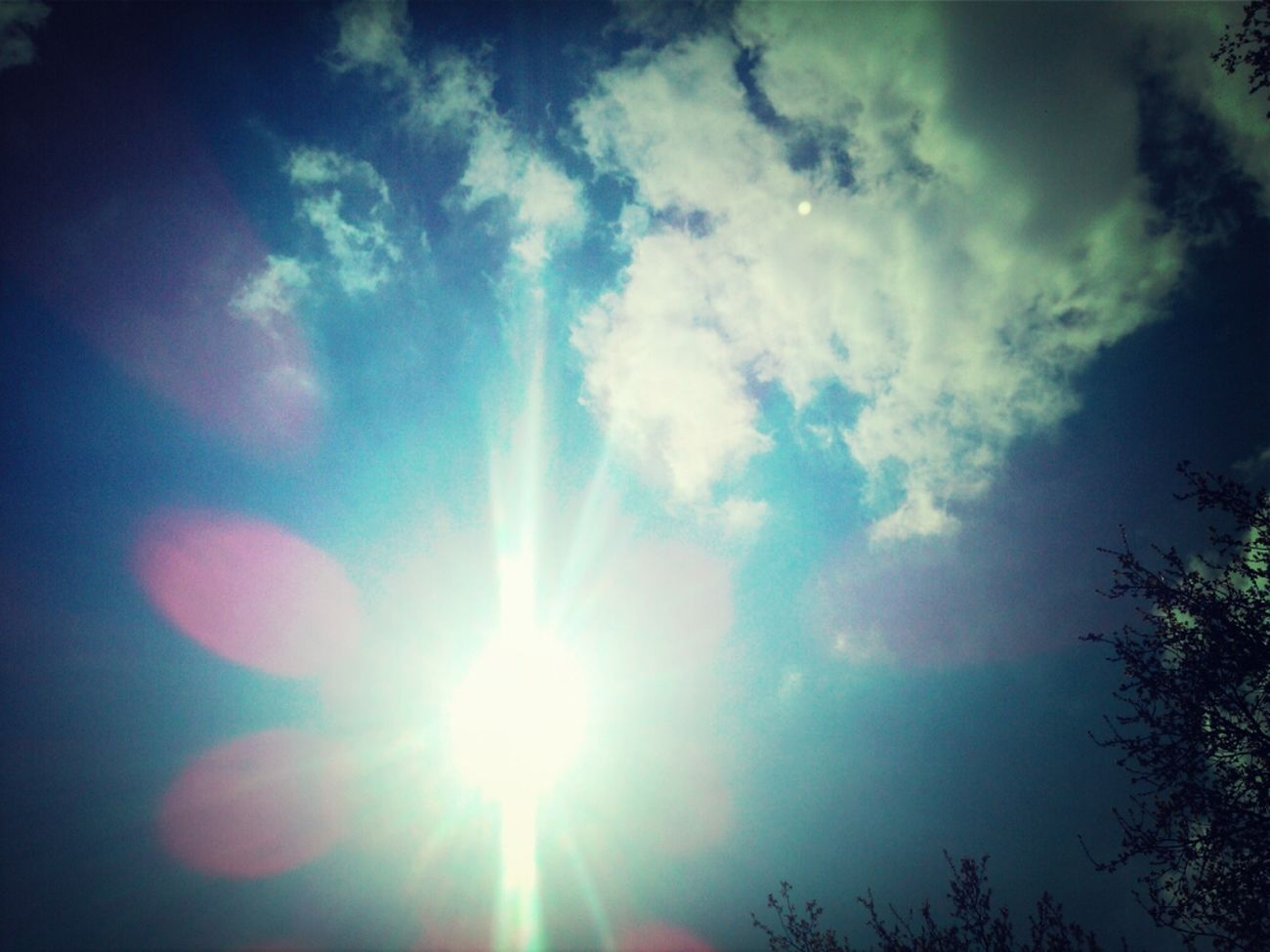 mooie dag vandag @nature