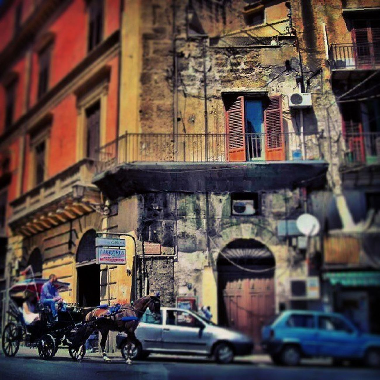 Sicilya Sicily Scilia Italya italy palermo street streetlife life igers igbox latergram instago instamag instacool instagood instafollow instadaily follower followme follow4follow follow followback followme webstagram tweegram traffic horse