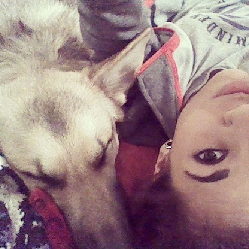 Selfiewithdog Sable Otherbaby Stretched ears zero