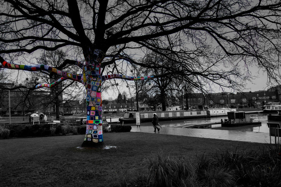 Wrapped up for the winter Tree Splash Yarnporn Stratford-upon-Avon