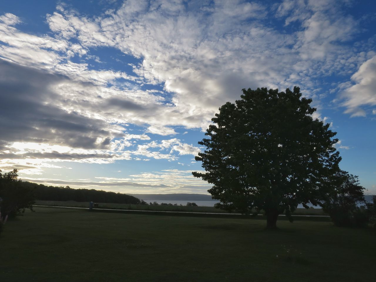 Morning Sky And Clouds Tree Cherry Tree In My Garden Landscape Amazing View Nature Beauty In Nature Tranquility Outdoors Commuting