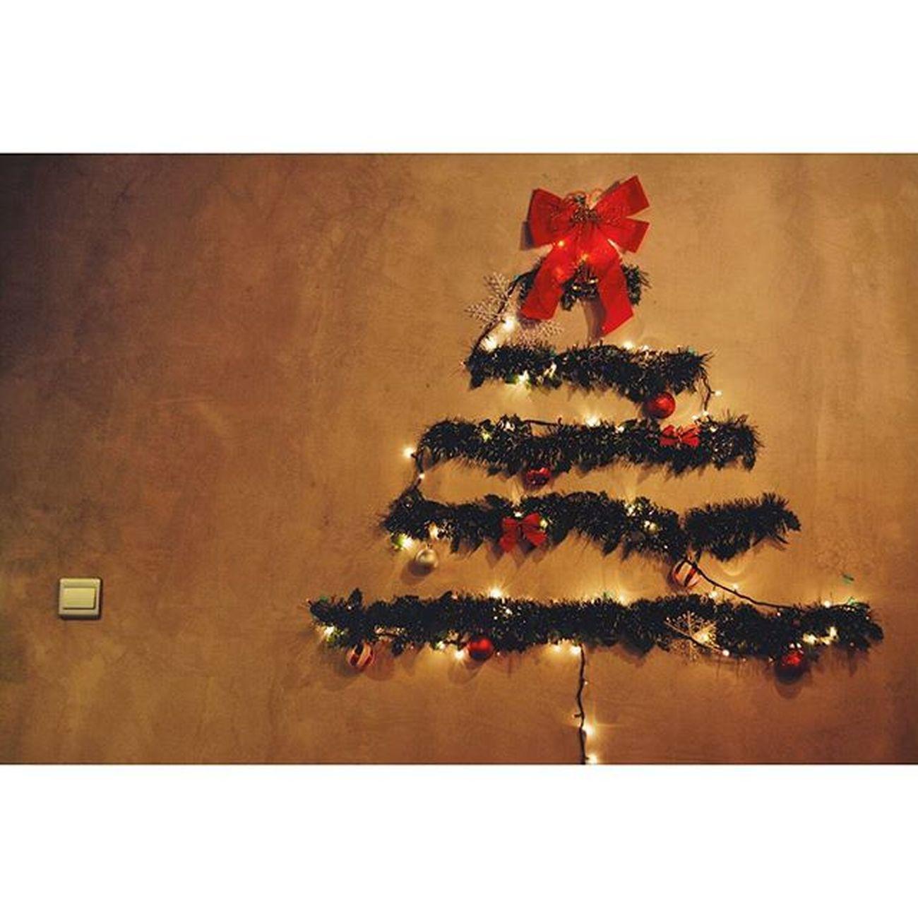 Merry Christmas Eve! 🎉🎉🎁🎁🎄🎄🎅🎅 241215 Thursday Photography Nikon DSLR D5200 Lenovo Portrait Instagram Instapost Instalike Instadaily VSCO Vscofile Vscocam Myalbum