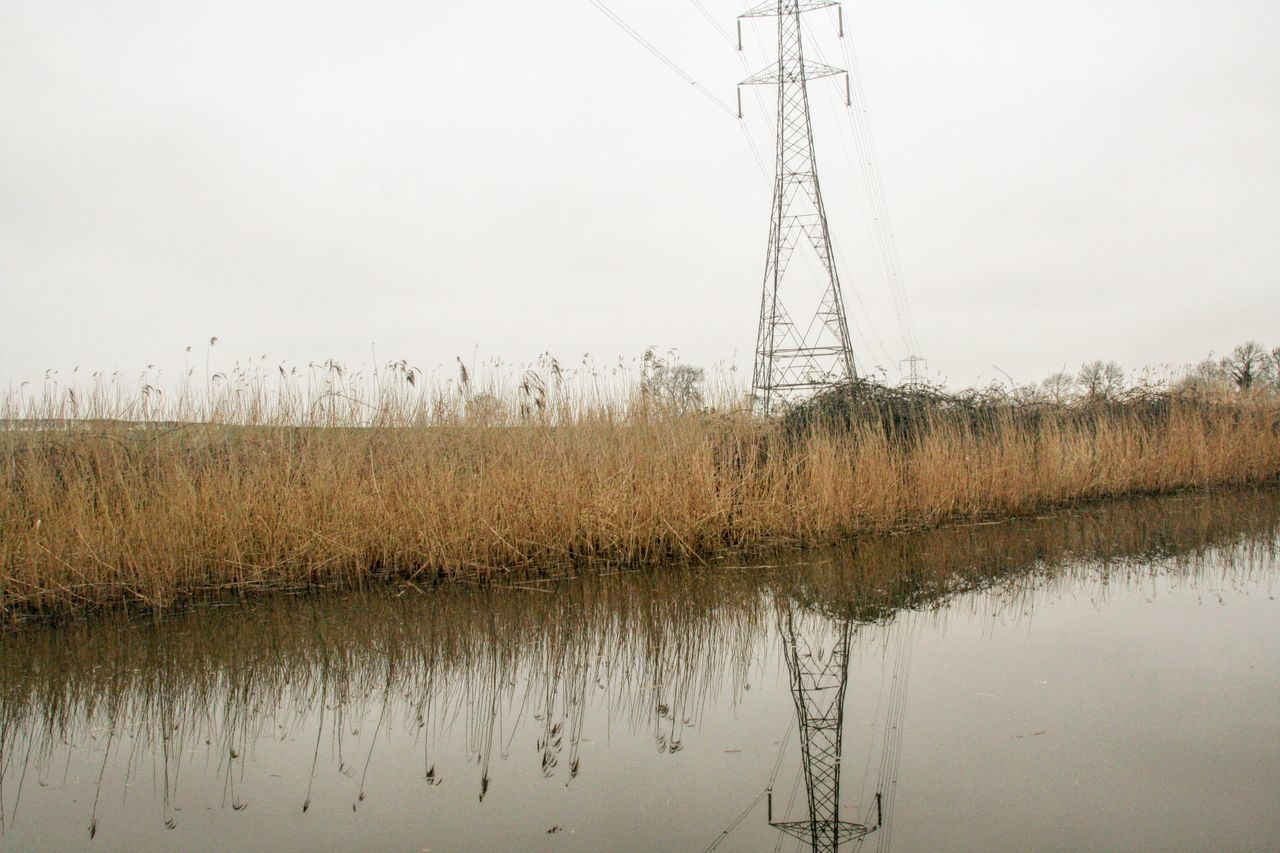 waters reflection Water Tranquility Reed - Grass Family Water Reflection Electricity Pylon Outdoors Wetland Popular EyeEmGalley EyeEm Team EyeEmBestPics Eyeem Market Trending Photos EyeEm Gallery