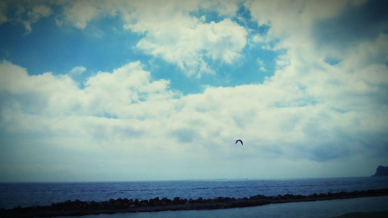 sea, sky, cloud - sky, horizon over water, nature, water, scenics, beauty in nature, beach, day, tranquil scene, tranquility, mid-air, outdoors, flying, leisure activity, adventure, parachute, one person, extreme sports, real people, bird, paragliding, people