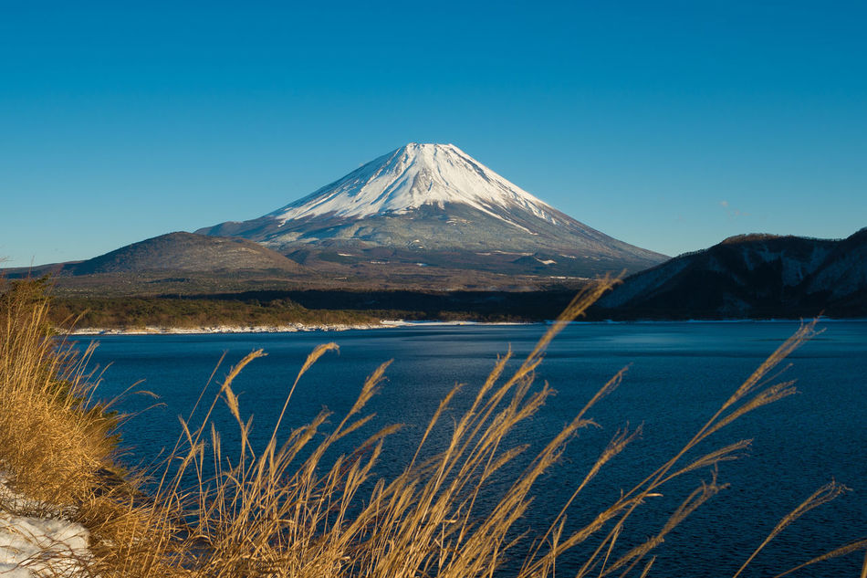 Beauty In Nature Blue Clear Sky Fuji San Horizon Over Land Landscape Motosulake Mountain Mountain Range Mt Fuji Gourmet Non Urban Scene Non-urban Scene Outdoors Physical Geography Scenics Snowcapped Mountain Tranquil Scene Tranquility Feel The Journey Ultimate Japan