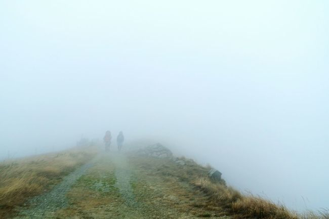 People And Places Fog Foggy Tranquility Tranquil Scene Weather Lifestyles Leisure Activity Men Solitude Standing Rear View Copy Space Remote Unrecognizable Person Togetherness Full Length Scenics Field Calm Non-urban Scene Open Edit Fresh 3 EyeEm Best Shots Eye4photography